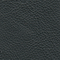 deepgreen-leather-upholstered-fabric