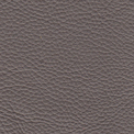 silver birch-leather-upholstered-fabric