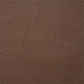Aston-mushroom-807-vinyl-fabric