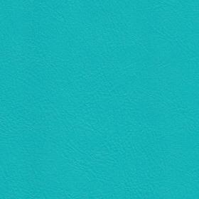 Colour-heaven-dragonfly-vinyl-fabric