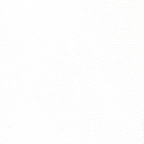 Prizm-white-vinyl-fabric