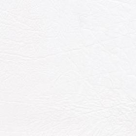 Taurus-polar-vinyl-fabric