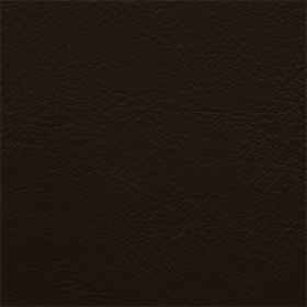 Aston-Panaz-Advantage7-807-Mushroom-280x280